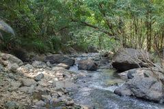 Einer der schönen Wasserfälle im Waldnatursommer das schönste Stockbild