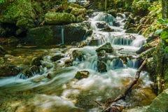 Einer der vielen magischen Wasserfälle durch die Crabtree-Fall-Spur lizenzfreies stockbild