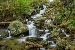 Einer der vielen schönen Wasserfälle durch die Crabtree-Fall-Spur stockfoto