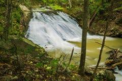 Einer der vielen Wasserfälle am Brüllen des Laufnebenflusses stockbild