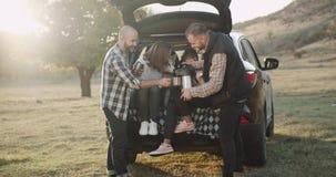 In einer Familie des sonniger Tag zwei mit kleine Kinder und ein heiserer Hund, ein Picknick mitten in Natur zu haben, haben sie  stock video footage