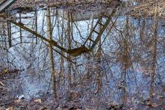 In einer Pfütze von reflektierten Bäumen, von Himmel und von Hügel lizenzfreies stockfoto