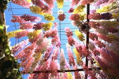 einer Plastikblume oben betrachten, die an einem Stahlrahmen hängt Stockfotos