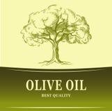 In einer schönen Flasche gekleidet mit Gewürzen Olivenbaum des Vektors Für Aufkleber Satz vektor abbildung