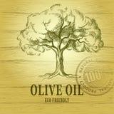 In einer schönen Flasche gekleidet mit Gewürzen Olivenbaum des Vektors Für Aufkleber Satz Lizenzfreie Stockfotografie