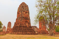 Eines Buddhas Statue Lizenzfreies Stockfoto