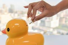 Einfügung die Münze zur Ente piggy lizenzfreies stockfoto