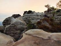 Einfach über ferrata im Sandsteinfelsen von Sachsen die Schweiz. Verdrehtes Seil des Eisens geregelt im Block Stockfotografie