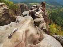 Einfach über ferrata im Sandsteinfelsen von Sachsen die Schweiz. Verdrehtes Seil des Eisens geregelt im Block Stockbilder