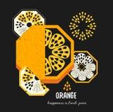 Einfache dekorative orange Fruchtillustration Vektorlebensmittel-Kunstdruck im geometrischen Stil Stockbild