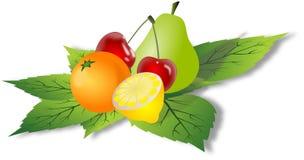 Einfache Früchte auf grünen Blättern Stock Abbildung