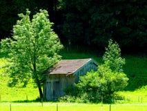 Einfache hölzerne Hütte mit mit Ziegeln gedecktem Dach zwischen 2 Bäumen stockbild