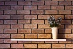 Einfache Innenarchitektur, Blumentopf im Regal auf Backsteinmauer Lizenzfreie Stockbilder