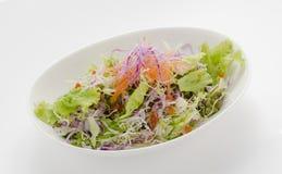 Einfache Salatplatte Stockbilder