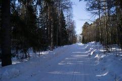 Einfache schneebedeckte Reifenbahnen - Porträt Lizenzfreie Stockbilder