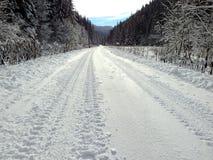 Einfache schneebedeckte Reifenbahnen - Porträt Lizenzfreie Stockfotografie