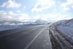 Einfache schneebedeckte Reifenbahnen - Porträt Stockbild