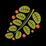 Einfache Vektorikone, -natur und -gartenarbeit des Frühlinges oder des Sommerblattes Lizenzfreies Stockfoto