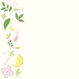Einfacher Blumenrahmen Lizenzfreies Stockfoto