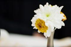 Einfacher Blumenstrauß Lizenzfreie Stockfotos
