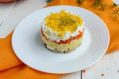 Einfacher Diätsalat überlagert in Form eines Kreises u. eines x28; Thunfisch im Öl, gekochte Kartoffeln, Karotten, eggs& x29; Stockfotos