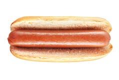 Einfacher Hotdog mit großer Wurst stockbild