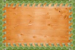 Einfacher Rahmen von den tadellosen Blättern lokalisiert auf weißem Hintergrund Stockfotos