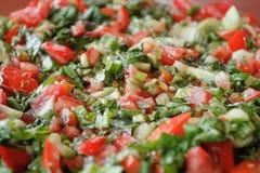Einfacher roter u. grüner Salat Lizenzfreie Stockfotos