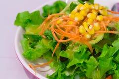 Einfacher Salat Lizenzfreies Stockfoto