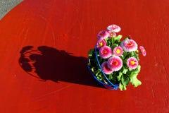 Einfaches Blumendekorations-Schattenbild lizenzfreies stockfoto