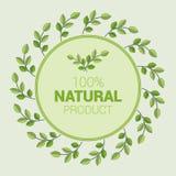 Einfaches Firmenzeichen für Ökologiethema stock abbildung