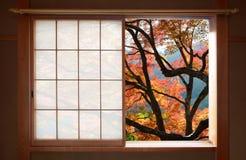 Einfaches japanisches hölzernes Rahmenfenster mit einer schönen Aussicht von Herbstahornblättern Stockfotografie