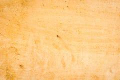 Einfaches Täfelungsbrett Stockbild