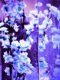 Einfarbige Blumen eingefroren in den Eiskasten transparent Stockfotos