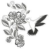 Einfarbige Hand gezeichnetes dekoratives Florenelement, Kolibri für Färbungsseite, Druck, Tätowierung Stockbilder