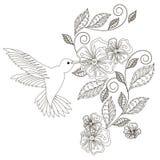 Einfarbige Hand gezeichnetes dekoratives Florenelement, Kolibri für Färbungsseite, Druck, Tätowierung Lizenzfreies Stockfoto