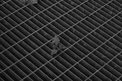 Einfarbige quadratische Metallluke in der städtischen Pflasterung, im Abwasserkanalkanaldeckel mit Markierungslinien und im Blatt Lizenzfreie Stockfotografie