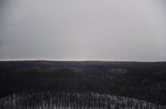 Einfarbige Winterlandschaft Bäume im Schnee, bewölkter Himmel Lizenzfreie Stockfotografie