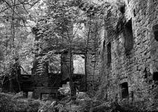 Einfarbiges Bild der aufgegebenen Mühle im Waldland lizenzfreies stockbild