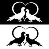 Einfarbiges Schattenbild von zwei Tauben und von Herzen Stockfotografie