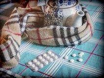 Einfassungen eines Schals zu einer Teekanne zusammen mit Kapseln stockbild