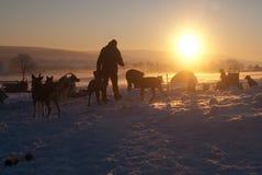 Einfrierender früher Morgen stockfotografie