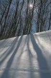 Einfrierender Tag Nachtfolgend schneesturm Lizenzfreies Stockbild
