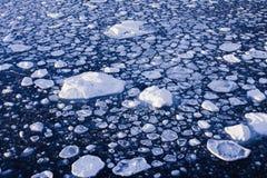 Einfrierendes Eis Stockfotos