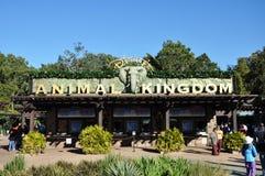 Eingang des Disney-Tierkönigreiches Lizenzfreies Stockfoto