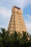 Eingang des Varadharadja Tempels Lizenzfreie Stockfotos
