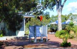 Eingang Maggie Beers zum Fasan-Bauernhofbauernhofshop, zum Restaurant und zum Konferenzzentrum Lizenzfreie Stockbilder