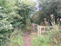 Eingang, zum im Forrest zu erhalten lizenzfreies stockbild