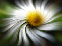 Eingebildete Blume Stockfoto