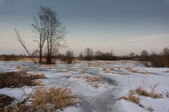 Eingefroren über Flusspool Lizenzfreie Stockfotografie